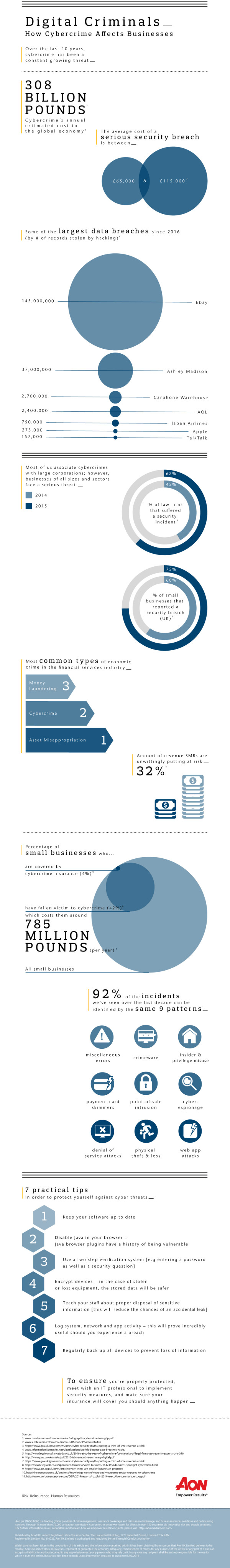 business_cyber_crime_infographic