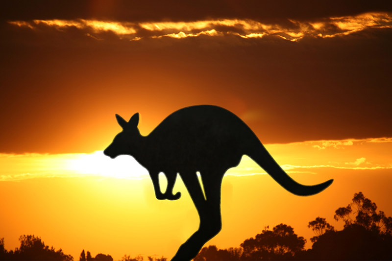 australian-geographic-lessons-for-media