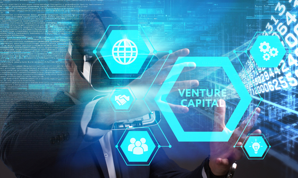 What Venture Capitalists Look For In Startups
